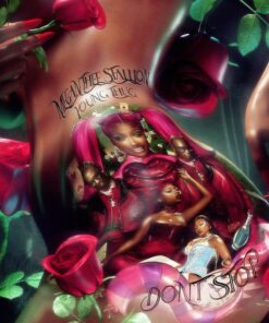Megan Thee Stallion – Don't Stop (feat. Young Thug) (Acapella & Instrumental)